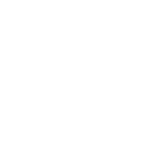 airplane icon in white